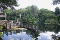 byggnadsflorida swamp Fotografering för Bildbyråer