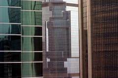 byggnadskontor högväxt tre royaltyfri bild
