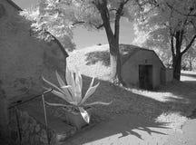 Byggt i vinkällare i fält Arkivbild