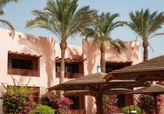 byggyta och hotellets palmträd i Hurghada egypt Th Arkivbild