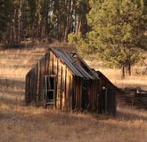 Bygone. An abandoned wooden shed, somewhere between Keystone and Hill City, South Dakota. It sits upon November grasses that spill out from the forest nearby stock images
