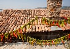 Byhus med högen för tegelplattatak och röda kyliga peppar som hänger på väggen Typisk hus av lantliga Turkiet Arkivfoto