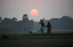 Byinvånarereturhem efter en hård dag på risfälten Arkivbilder