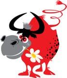 byk czerwień Obraz Royalty Free