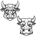 Byk przewodzi ilustracje odizolowywać na białym tle Projektuje element dla loga, etykietka, emblemat, znak Obraz Stock