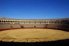 byk ringowy Seville Zdjęcia Royalty Free