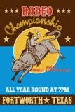 byka rodeo kowbojski jeździecki ilustracja wektor