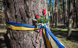 Bykivnia gravar Fotografering för Bildbyråer