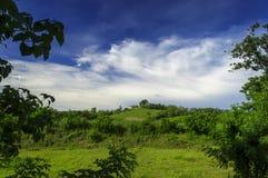 Bykyrka på kullen. Arkivfoto