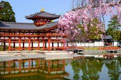 Byodo-dans le temple au printemps Image stock