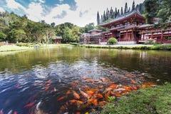 Byodo-i templet Kaneohe, Oahu, Hawaii Fotografering för Bildbyråer