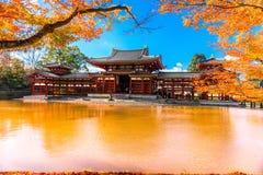 Byodo-i templet kyoto Royaltyfria Foton