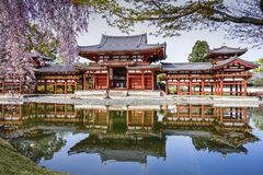 Byodo-in royalty free stock photography