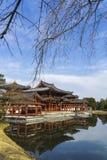 Byodo-no templo em Kyoto, Japão imagens de stock royalty free