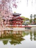 Byodo-no templo, Kyoto, Japão 6 foto de stock