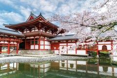 Byodo-in tempio in Uji, Kyoto, Giappone durante la molla Fiore di ciliegia a Kyoto, Giappone immagini stock libere da diritti
