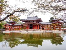 Byodo-in temple, Kyoto, Japan 3 Stock Image
