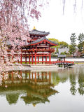 Byodo-in temple, Kyoto, Japan 6 Stock Photo