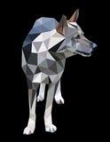 Byracka en varg, en hund i en polygonstil Text och teckning av flickan vektor illustrationer