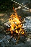 Byrning Holz im geöffneten Feuer Stockfoto