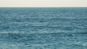 Byron Bay Beach in Nuovo Galles del Sud archivi video