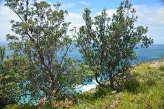 Byron Bay - lato della spiaggia fotografie stock