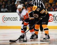 Byron Bitz, Boston Bruins Royalty Free Stock Image