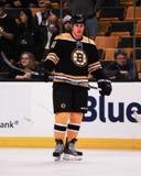 Byron Bitz, Boston Bruins Stock Images