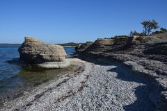 Byrum`s raukar at the island Oland. With limestone coast royalty free stock images