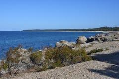 Byrum`s raukar at the island Oland. With limestone coast stock photography