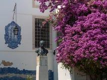 Byst av den portugisiska historiker Julio de Castilho nära purpurfärgade Bougainville, Lissabon royaltyfria foton