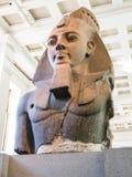 Byst av Ramesses II, 13th århundrade F. KR., British Museum Royaltyfria Bilder