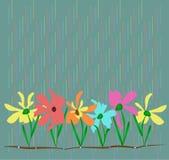 bystre kwiaty Fotografia Stock
