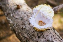 bystre pierścienie się tło białe Ślubni symbole, atrybuty zdjęcie stock
