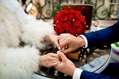 bystre pierścienie się tło białe zdjęcia stock