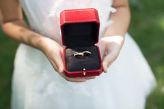 bystre pierścienie się tło białe Zdjęcie Royalty Free