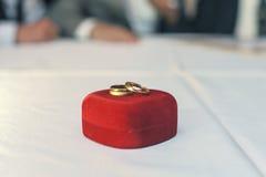 bystre pierścienie się tło białe Obrazy Royalty Free