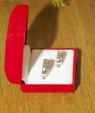 bystre pierścienie się tło białe Zdjęcia Royalty Free