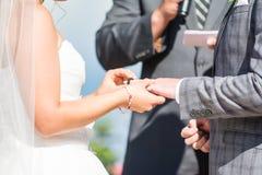 bystre pierścienie się tło białe Zdjęcie Stock