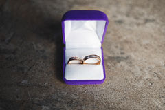 bystre pierścienie się tło białe Fotografia Stock