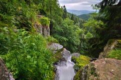 Bystre-vodopad Wasserfall bei Polana stockbilder