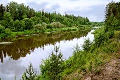 Bystritsa river Royalty Free Stock Photo