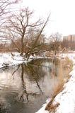 Bystrzyca River view Stock Photos