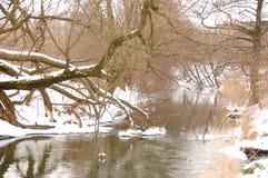 Bystrzyca River view Stock Photography