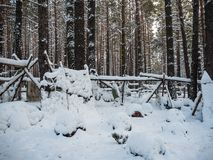 Byträdgård som täckas med snö, Novosibirsk, Ryssland royaltyfri foto
