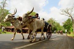 Bytrans. av Gujarat, Indien Arkivfoto