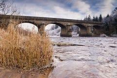 Bywell bridge Royalty Free Stock Photo