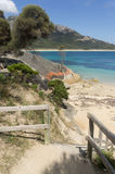 Byxan pekar, Flindersön, Tasmanien, Australien arkivbild