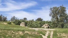 Byzantijnse Reservoirs in Negev in Israël royalty-vrije stock afbeelding
