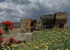 Byzantijnse ru?nes tussen aard royalty-vrije stock afbeeldingen